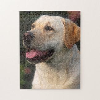 Portret van Labrador, Hilton Puzzel