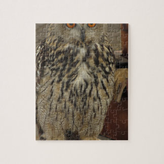 Portret van lang-eared uil. Otus van Asio, Foto Puzzels