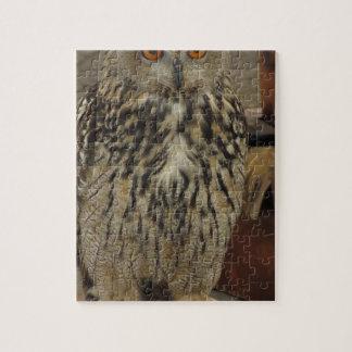 Portret van lang-eared uil. Otus van Asio, Legpuzzel