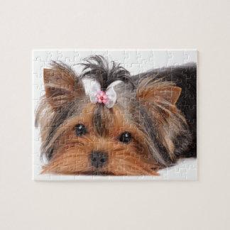 Portret van leuk puppy puzzel
