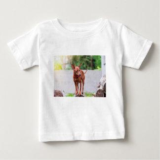 Portret van rode miniatuurpinscherhond baby t shirts