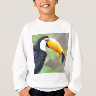 Portret van tocotoekan trui