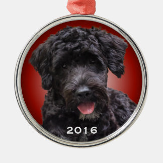 Portugese Rode Stralend van het Ornament van de