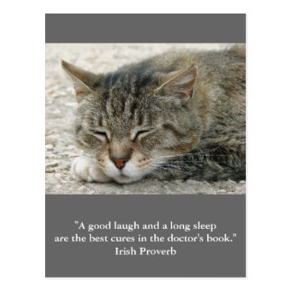 "Postcard cat with quote ""a good laugh and..."" briefkaart"