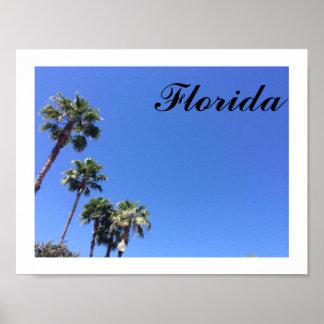 Poster van de Hemel van Florida het Blauwe
