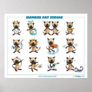Poster van de Katten van de dierenriem Siamese