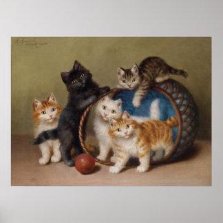 Poster van de Steen van vijf het Speelse Katjes