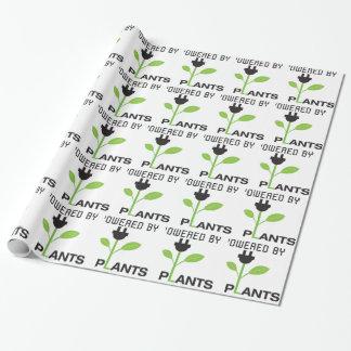 POWERD DOOR PLANT INPAKPAPIER