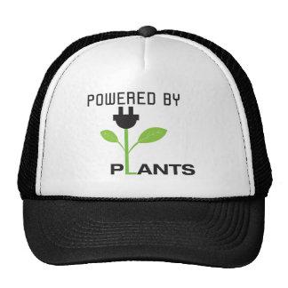 POWERD DOOR PLANT PETTEN