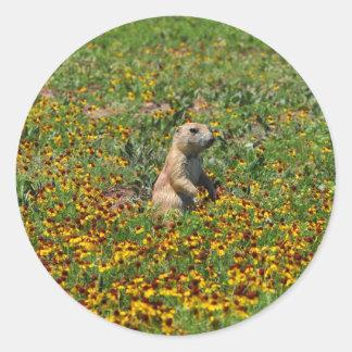 Prairiehond in Bloemen Ronde Sticker