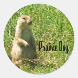 Prairiehond Ronde Sticker