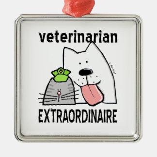 Pret Veterinaire Extraordinaire Zilverkleurig Vierkant Ornament