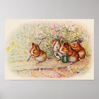 Proefkonijnen in de Tuin Poster