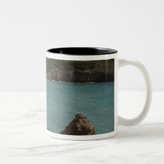 Puerto Rico, de Kust van het Westen, Cabo Rojo, Tweekleurige Koffiemok
