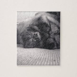 Pug van de slaap puzzel