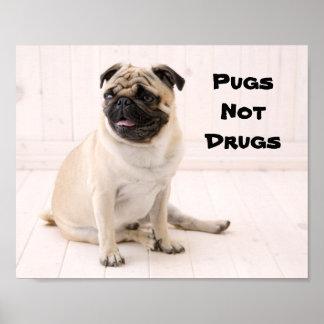 Pugs niet het Poster van Drugs