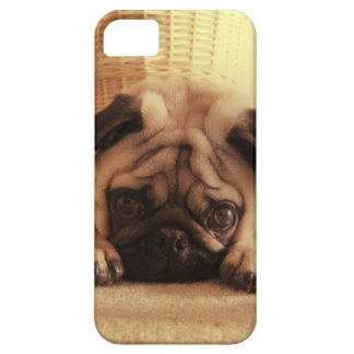 Pugs van SweetPea Barely There iPhone 5 Hoesje