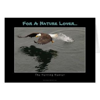 Punt van de Gift van de jacht het Kale Eagle Briefkaarten 0