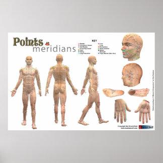 Punten en meridianen van het Geannoteerde lichaam  Poster