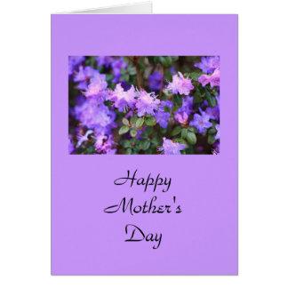 puple azalea bloeiende struik kaart