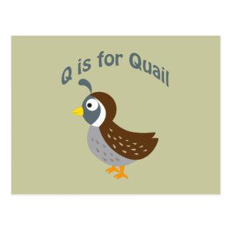 Q is voor Kwartels Briefkaart