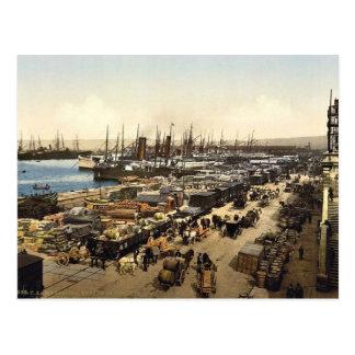 Quay DE La Joliette, Marseille, Frankrijk Briefkaart