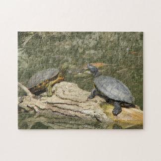 Raadsel--Geschilderde Schildpadden Legpuzzel