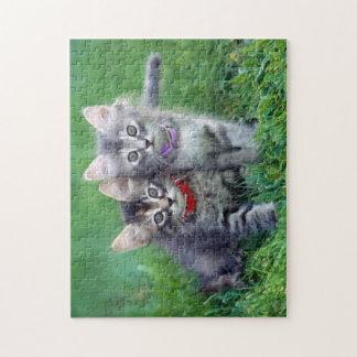 Raadsel van twee het Leuke Grijze Katjes Legpuzzel