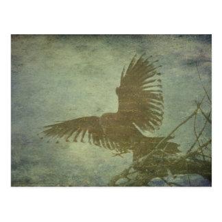 Raaf van Poe Poëzie Briefkaart
