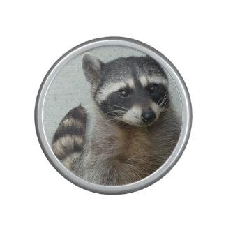 Raccooons Bluetooth Speaker