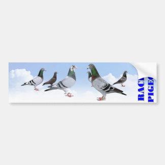 Racing Pigeons Bumpersticker