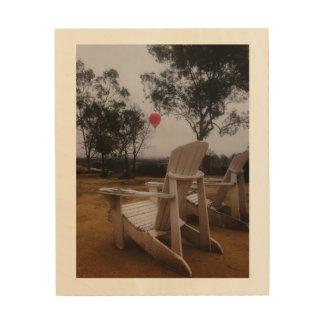Rancho Del Vinedos Temecula, de ballonuitzicht van Hout Afdruk