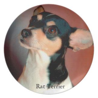 Rat Terrier Melamine+bord