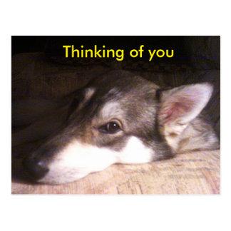 """Recentste Briefkaarten - """"het Denken aan u"""" reeks Briefkaart"""