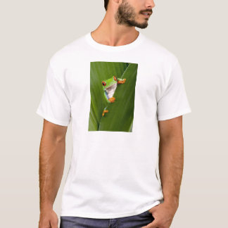 Red eyed tree frog t shirt