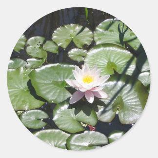 Reeks waterlelie ronde sticker