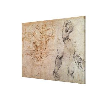 Regeling voor het Plafond van de Kapel Sistine, c. Canvas Prints