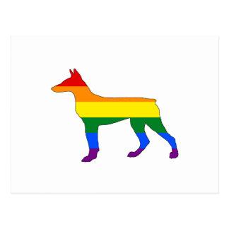 Regenboog Doberman Briefkaart