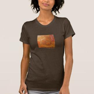 Reis aan de T-shirt van Egypte