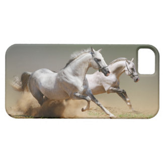 Ren de Paarden van de Wind Barely There iPhone 5 Hoesje