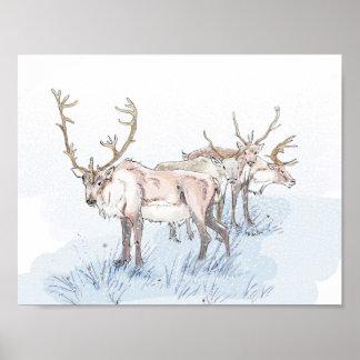Rendier in de Druk van de Sneeuw Poster
