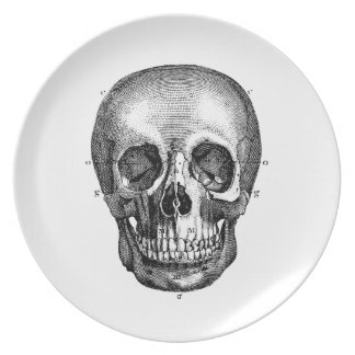 Retro Anatomische Oude Tekening van de vintage Melamine+bord