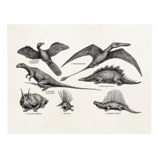Retro Dinosaurussen van de vintage Illustratie van Briefkaart