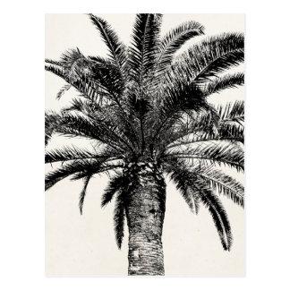 Retro Tropische Palm van het Eiland in Zwart-wit Briefkaart