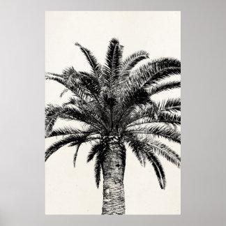 Retro Tropische Palm van het Eiland in Zwart-wit Poster