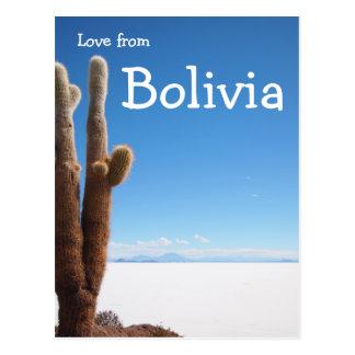 Reuze cactus op de Salar DE Uyuni tekstkaart Briefkaart