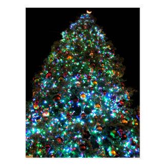 Reuze Kerstboom IIII Briefkaart
