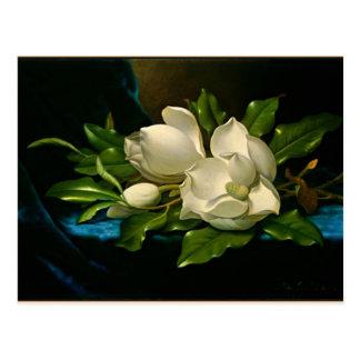 Reuze Magnolia op een Blauwe Doek van het Fluweel Briefkaart