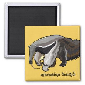 reuze miereneter vierkante magneet