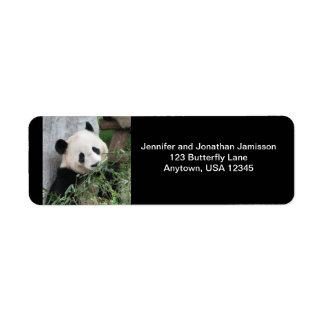 Reuze Panda, het Zwarte Adresetiket van de Etiket